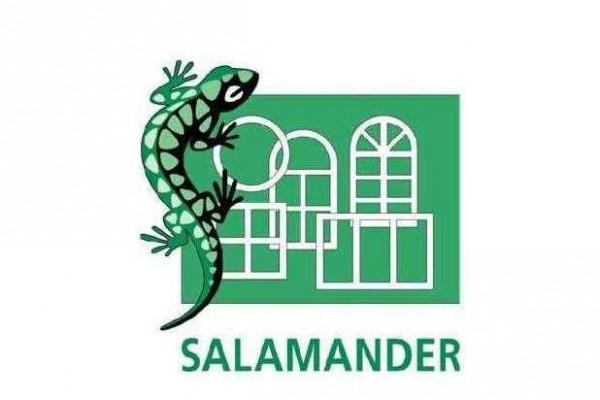 Ferestre - Sistemele de profile SALAMANDER
